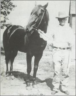 Joe Hancock, horse & man