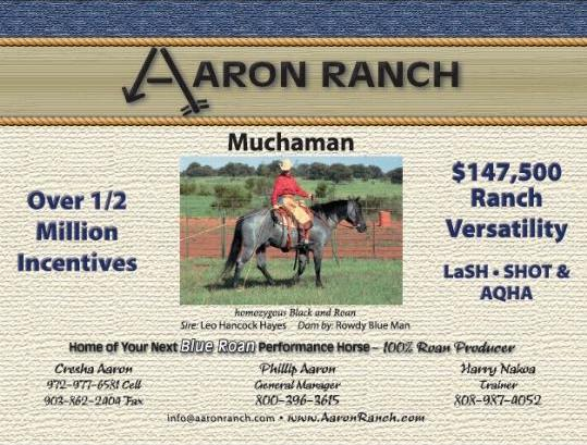 click here to visit Aaron Ranch website