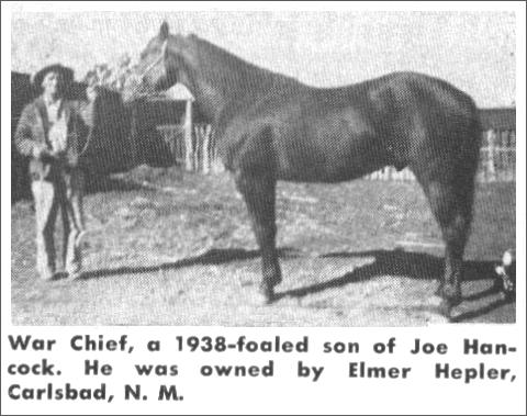 photo of War Chief, son of Joe Hancock, foaled 1938, owned by Elmer Hepler, Carlsbad, NM